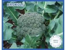 Biogen Tohum  Brokoli Tohumu 100 Gr