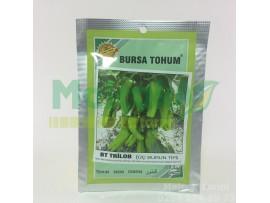 Bursa Bt Trilob Üç Burun Biber Tohumu 25 Gr