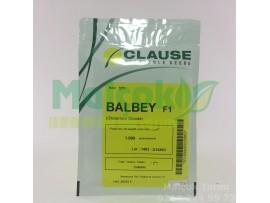 Clause Balbey F1 Hibrit Kırkağaç Kavun Tohumu 1000 Adet