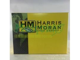 Harris Moran Turbo  F1 Tatlı Mısır 5000 Adet