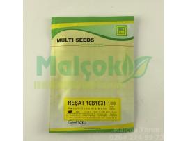 Multi Reşat 10B1631 Hibrit Kavun Tohumu 1000 Adet