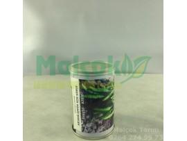 Reem Seed Aşağı Bakan Süs Biber Tohumu 100 Gr